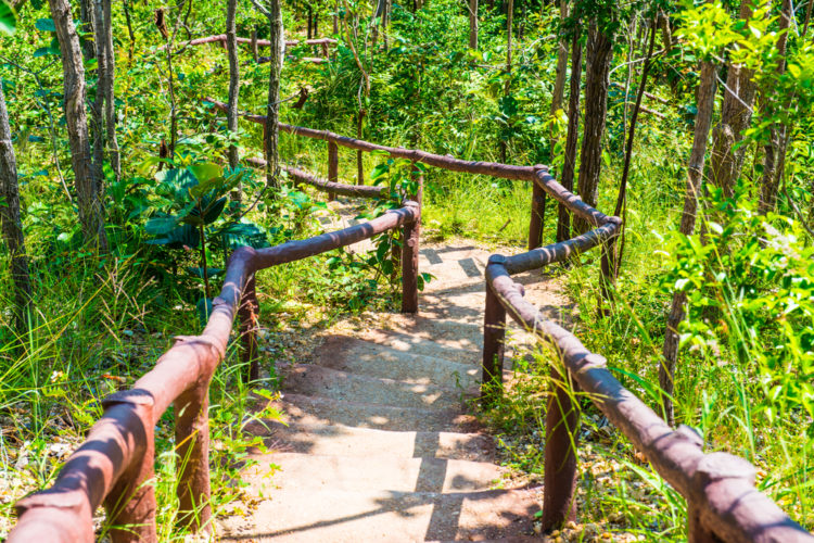 Mai Chau Trail