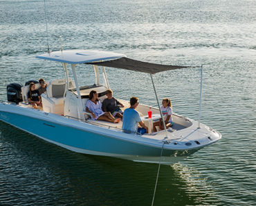 Boston Whaler Dauntless