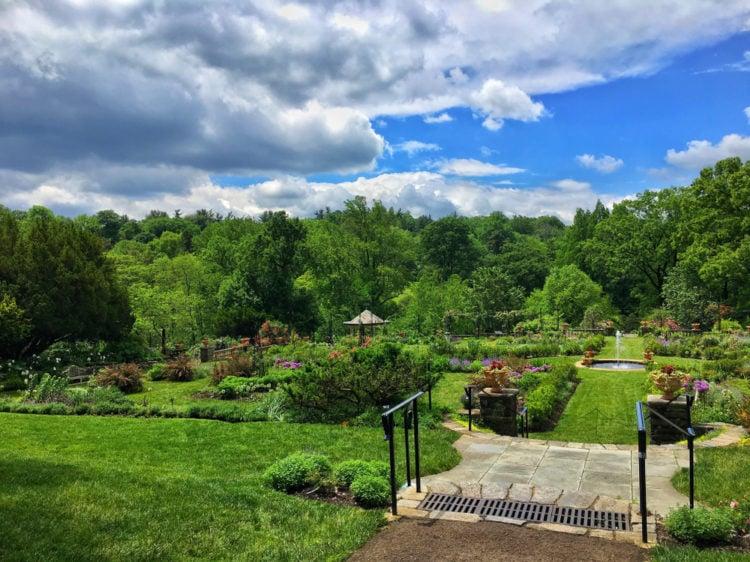 Fairmount – Spring Garden