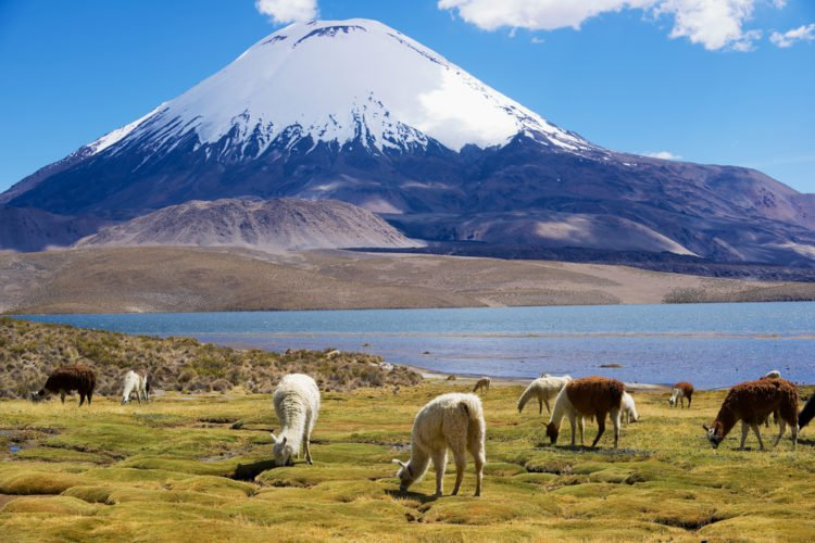 Mountain Lakes in Lauca National Park