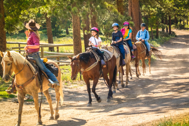 Try Horseback Riding at Boulder Mountain Ranch
