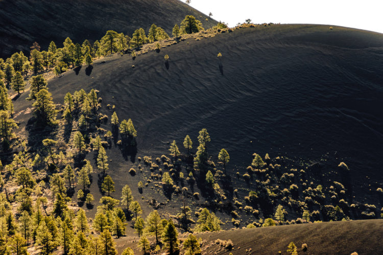 Tour Sunset Crater Volcano National Monument