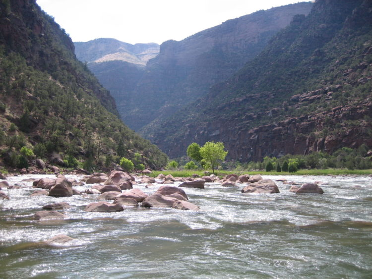 White Water Rafting on Weber River