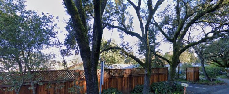 Hummingbird Garden Retreat