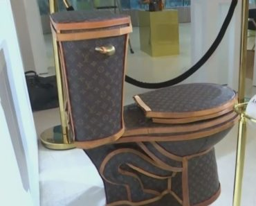 Did You Know There's Such Thing as a Louis Vuitton Toilet?