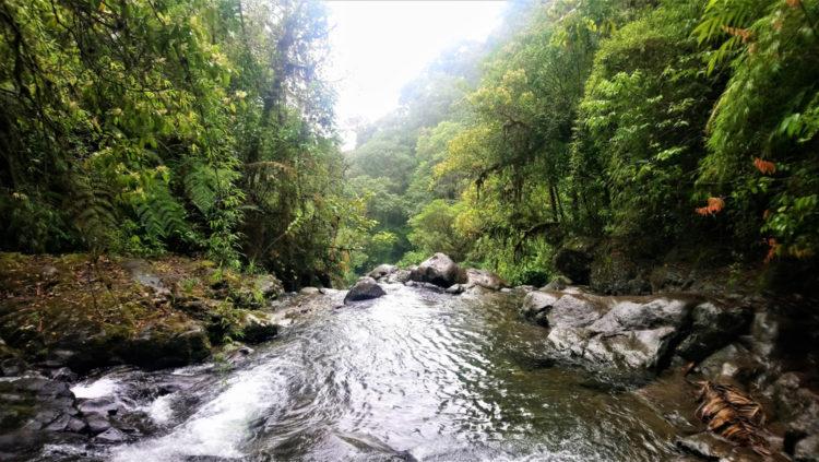 The Darien Gap, Panama