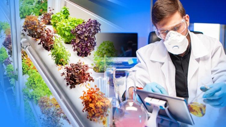 Plant Based Technologies
