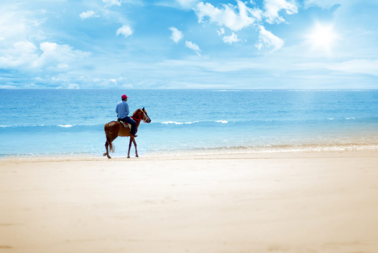 horseback ride at the ocean