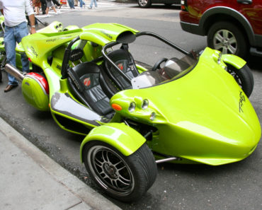 10 Things You Didn't Know about The Campagna T-Rex