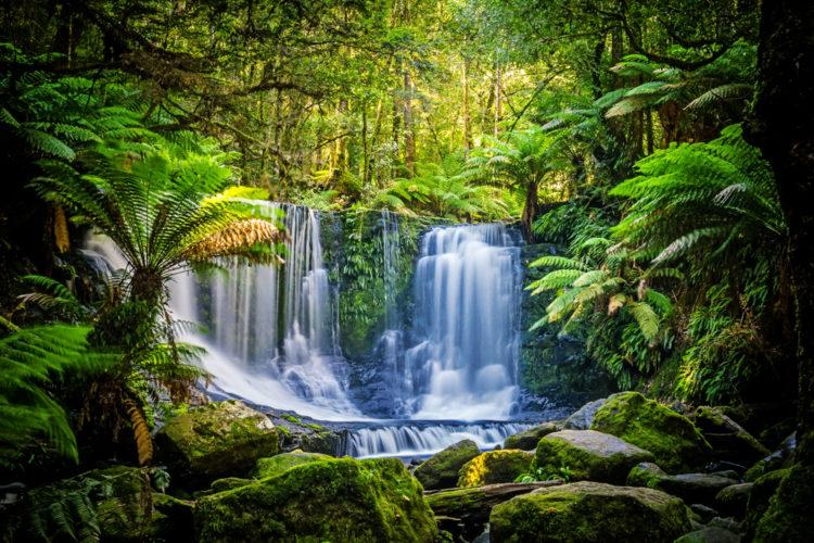Cape Grim Peninsula, Tasmania