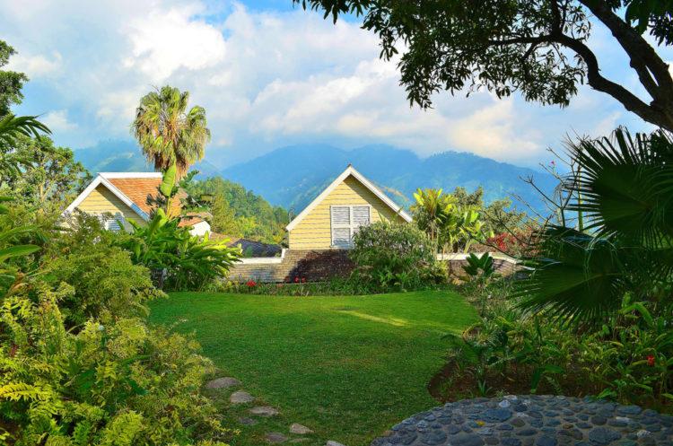 Ras Natango Gallery and Garden