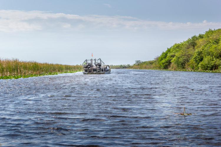 Take an Air Boat Ride