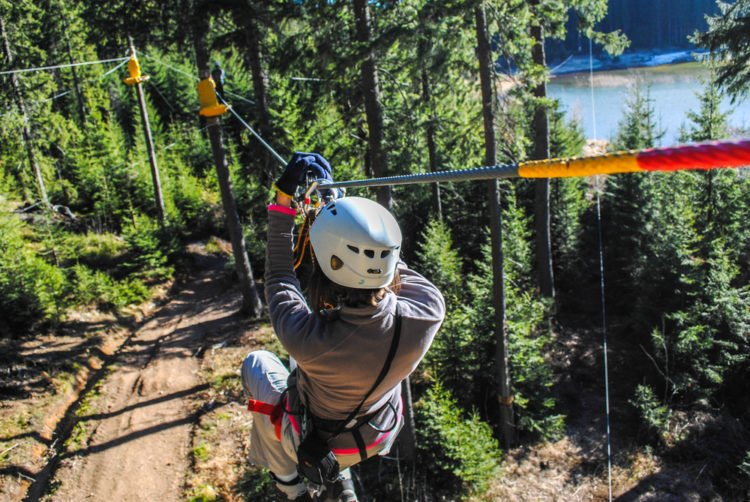 Swing Through the Trees at Orlando Tree Trek Adventure Park Zip Line