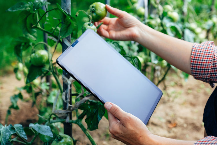Gardening Technology