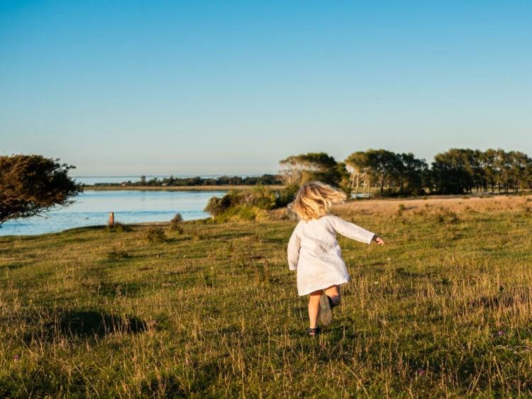 Explore Four Dances Recreation Area