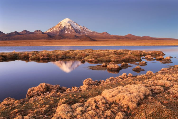 Altiplao Highlands, Bolivia