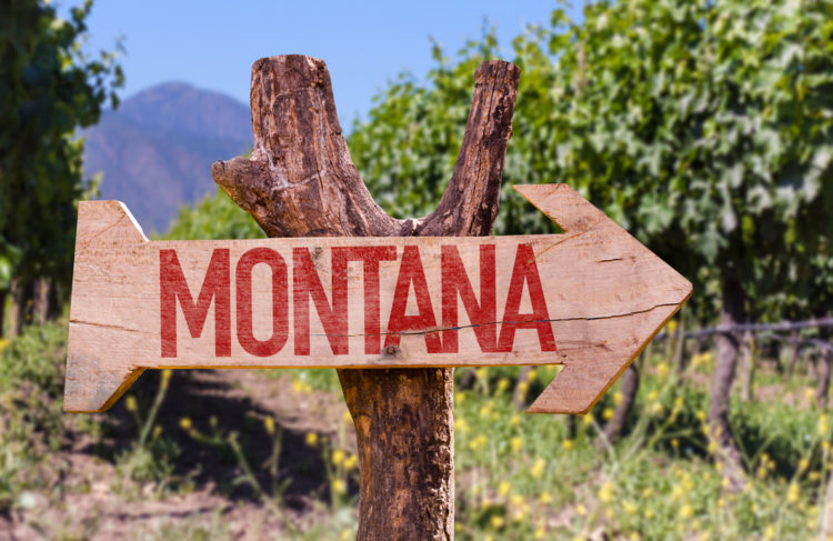 Sample the Wines at Yellowstone Cellars & Winery