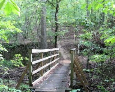 A Traveler's Guide to Hiking in Paducah, KY