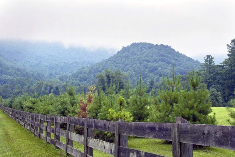 Southern Pines, North Carolina