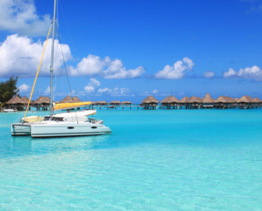 Go sailing in a catamaran