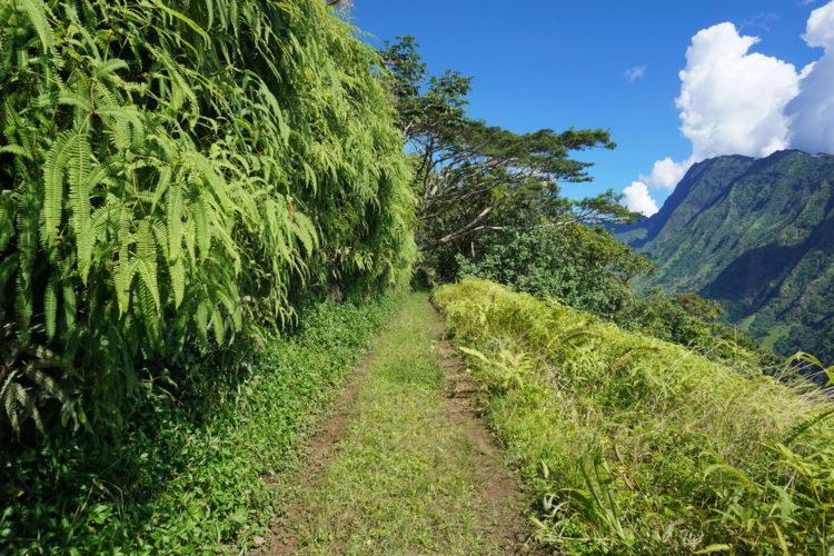 Hiking Tahiti