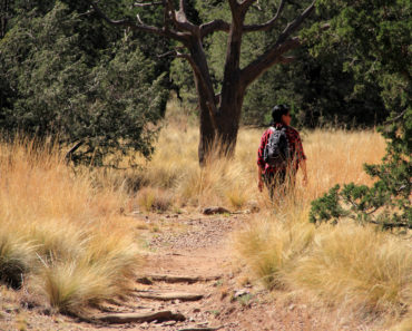 A Traveler's Guide to Hiking in Texarkana