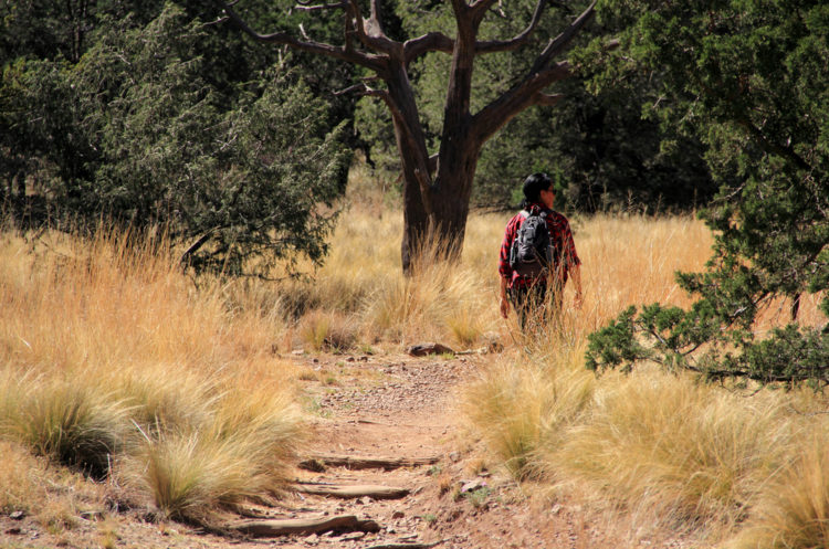 Hiking Texarkana