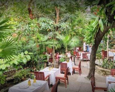 The 10 Best Restaurants in Puerto Vallarta