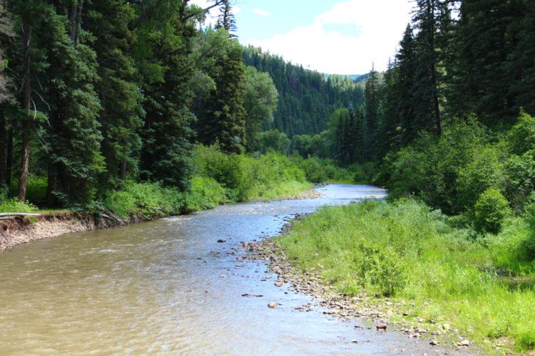 San Juan Creek Trail
