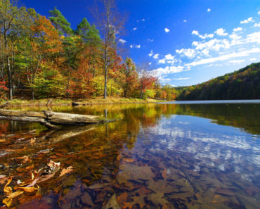 The 10 Best State Parks in Indiana