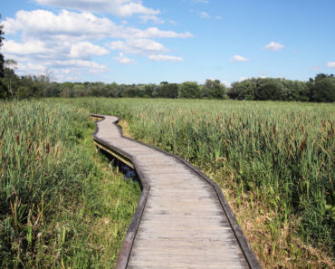 The 10 Best State Parks in New Jersey