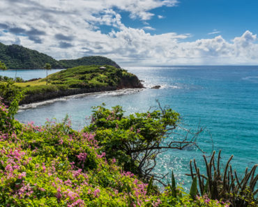A Traveler's Guide to Hiking in Antigua