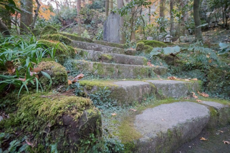 Take the Enchanted Trail at Rock City Gardens