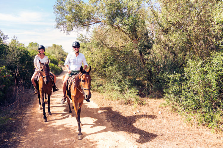 Ride a horse at Porter Mountain Stables
