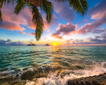 When is The Best Time to go to Hawaii?