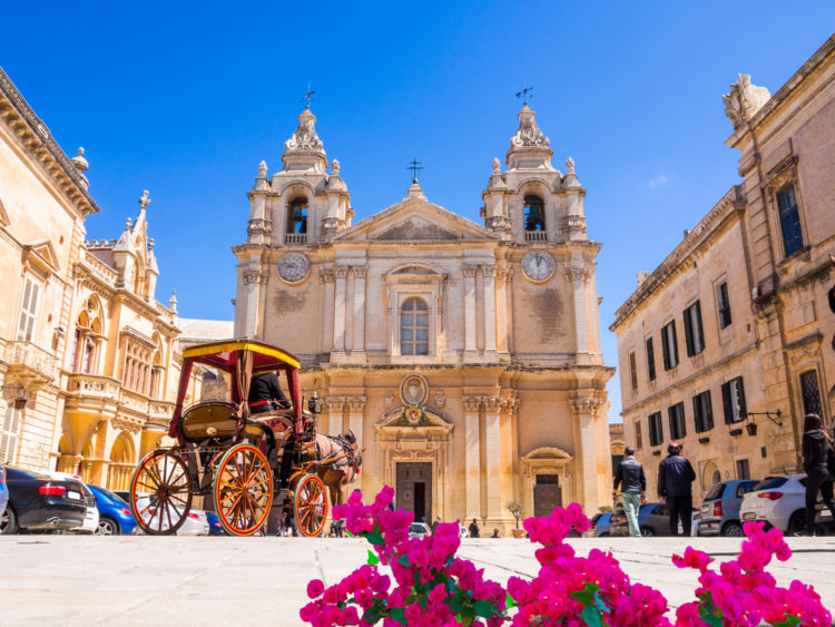 Explore the ancient city of Mdina
