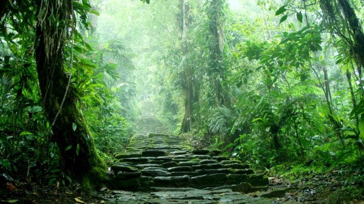Explore Las Malocas Park