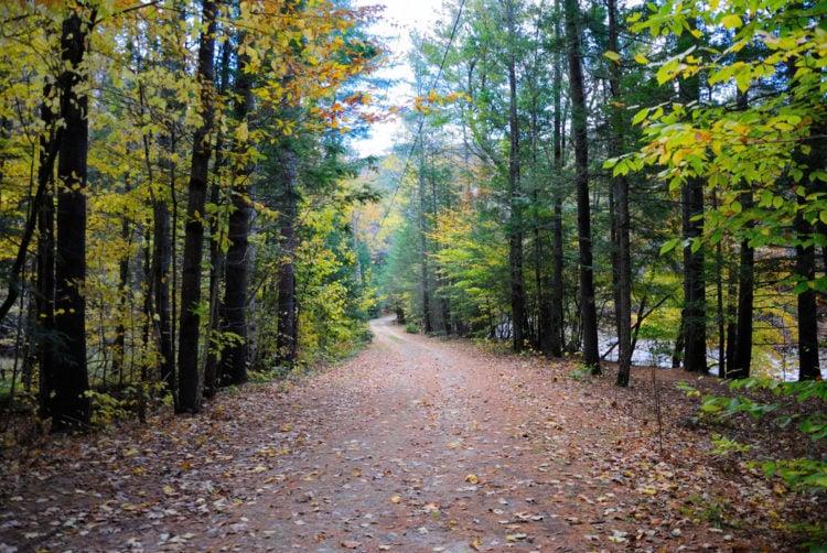 Hike the Farmington Canal Heritage Trail