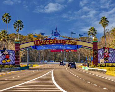 What's it Like to go on a Disney VIP Tour?