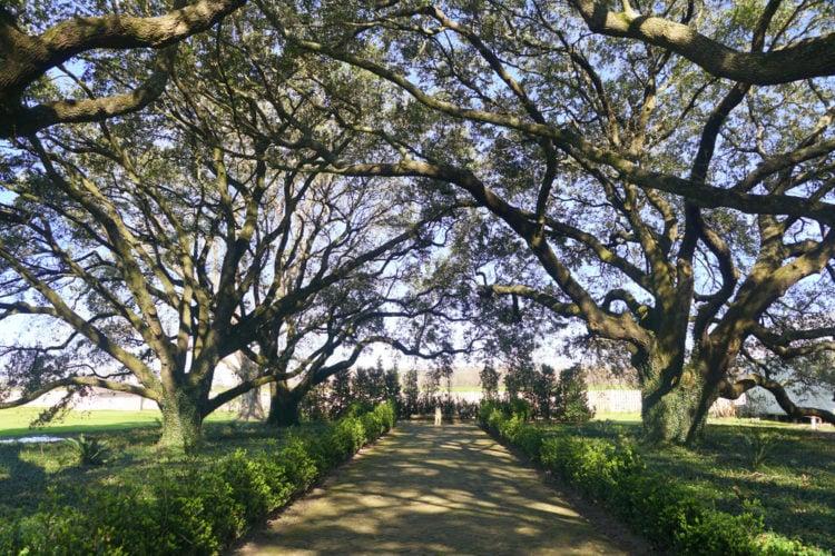 Whitney Plantation - Wallace, Louisiana