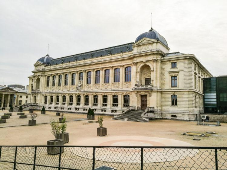 Visit the Muséum d'Histoire Naturelle