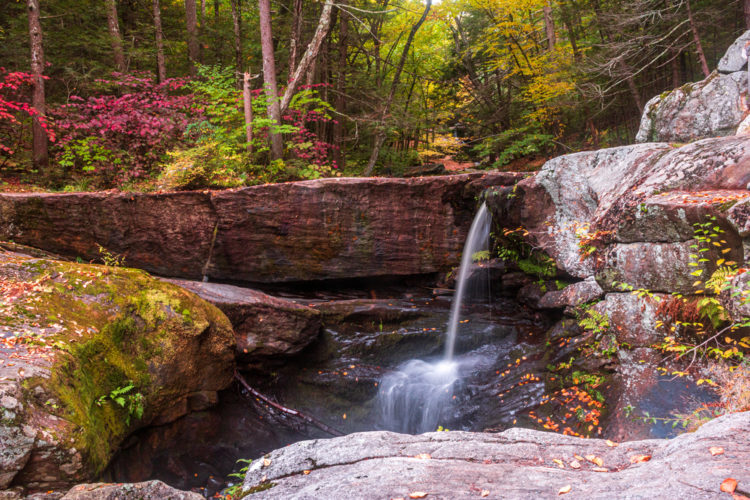 Admire the beauty of Enders Falls