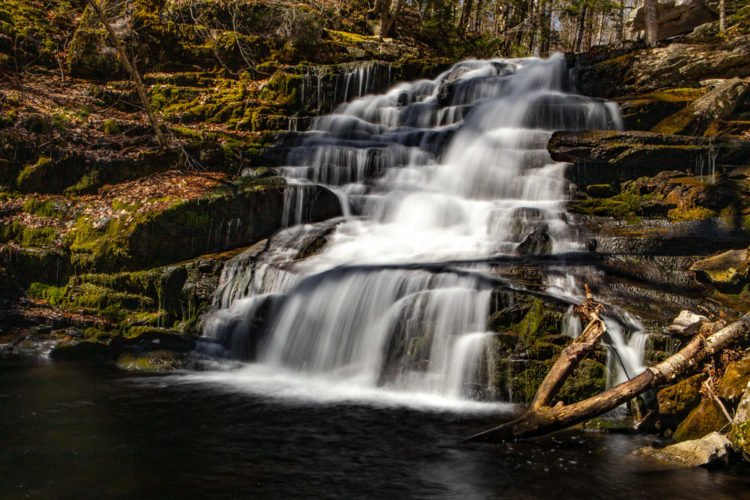 Explore the Tunxis State Forest