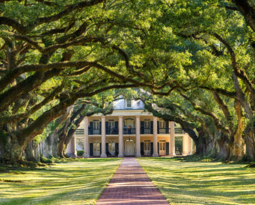 20 Plantations You Should Visit in the United States
