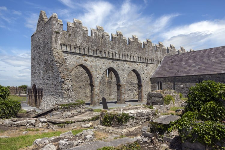 Check out the gargoyles at Ardfert Cathedral