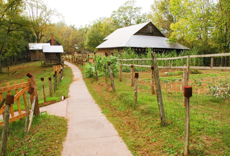 Jarrell Hill Plantation - East Juliette, Georgia