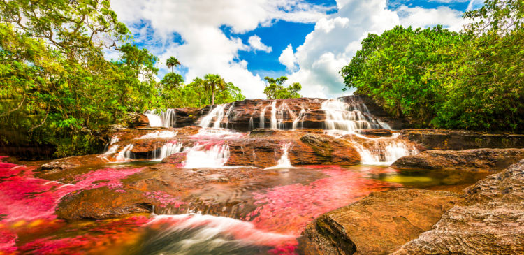 See the Cano Cristales