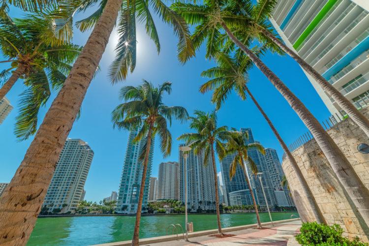 Miami Riverwalk, Miami, Florida